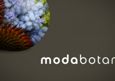 Logo Design: Moda Botanica