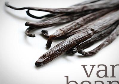 Logo Design: Vanilla Beans